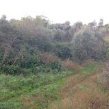 Pontepiccolo – terreno edificabile b1 di circa 1.200 mq