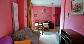 CATANZARO CENTRO – VIA MARIO GRECO. Affittasi appartamento arredato con 3 vani letto + accessori e possibilità a parte di p. Auto